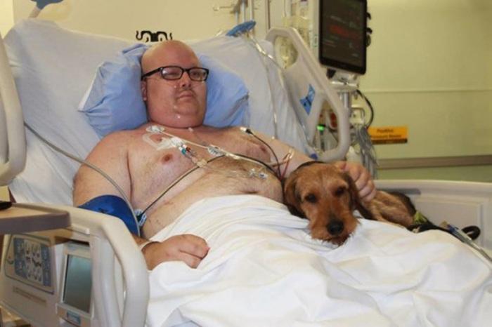 На здоровье: как любовь собак и кошек спасает людей