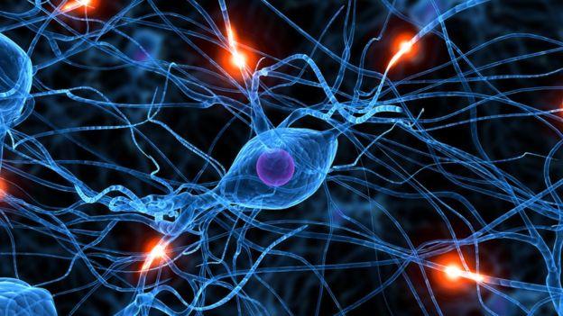 Наука, человек, здоровье, психология, мозг, боль, сигналы, нервы, обратная связь, парадоксы, загадки