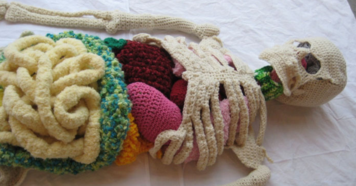This Artist Was So Curious About The Human Body, She Spent 8 Months Crocheting An Anatomically Correct Skeleton