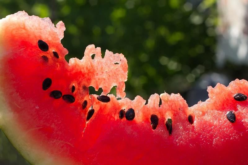 семена арбуза польза и вред