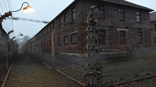 Польскому министру объяснили, кто освобождал Освенцим