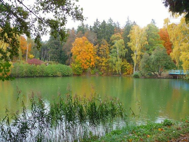 Осень, осень...   (Яков Шафран)