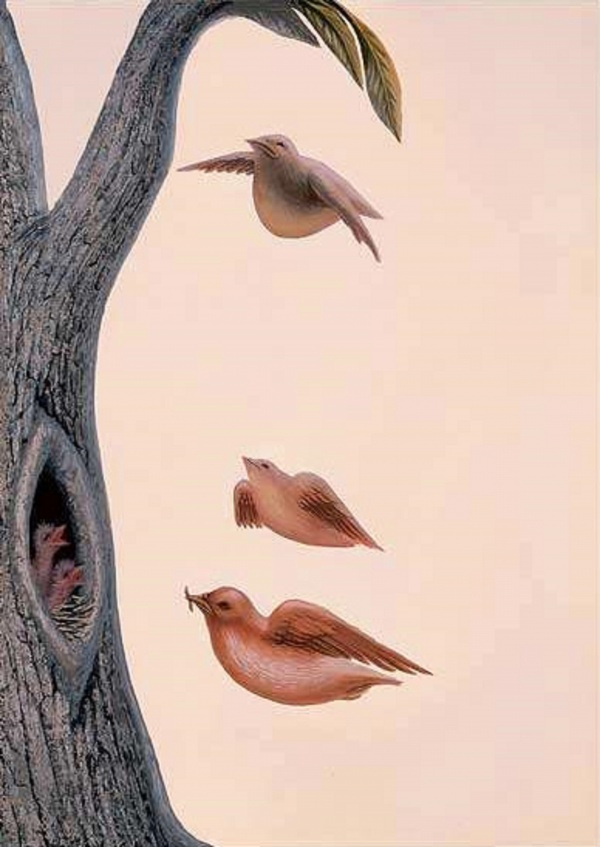 Картины художника Октавио Окампо 25