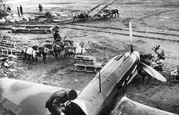 Страницы истории: готовил ли Сталин десант на Аляску