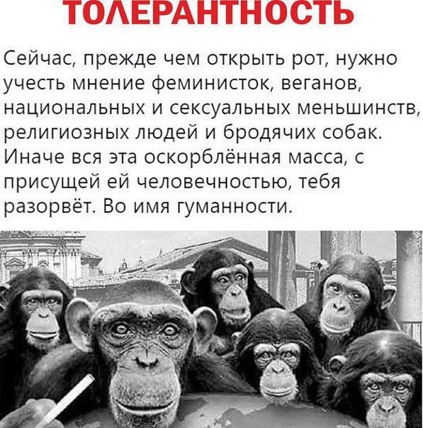 http://mtdata.ru/u19/photo1337/20842049557-0/original.jpg#20842049557