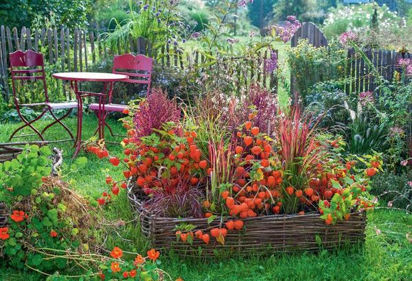Плетни органично вписываются в рустикальные сады. Вы можете приобрести готовые элементы в садовом центре либо сделать их своими руками из прутьев лещины или ивы.