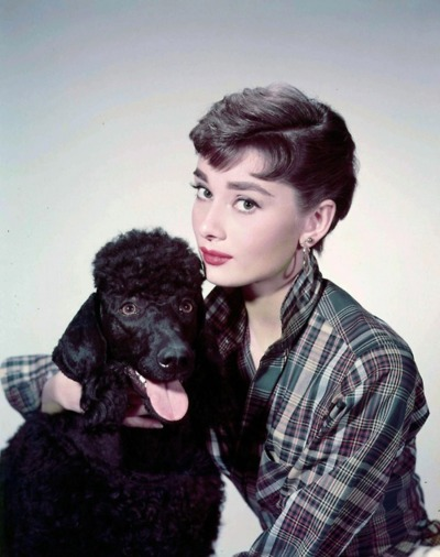 Одри Хепберн и животные