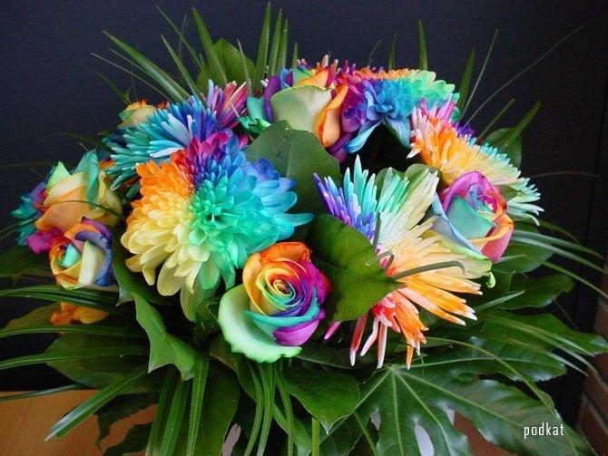 "Flowers Send Flowers Gift Flowers Wedding Flowers "" Blog Archive "" Amazing Happy Flowers Wallpapers"