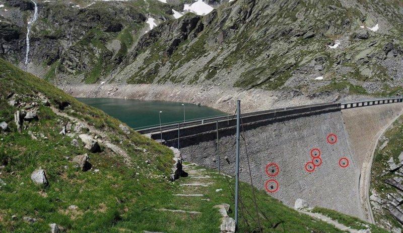 Альпийские козы в Италии ход…