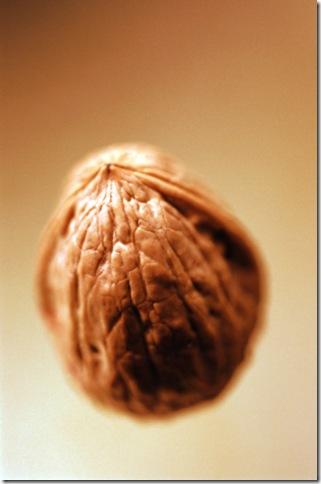 Волшебный грецкий орех