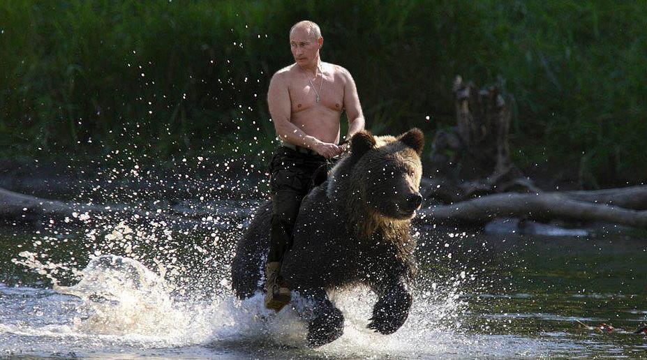 «Запад может поцеловать русского мишку в задницу»
