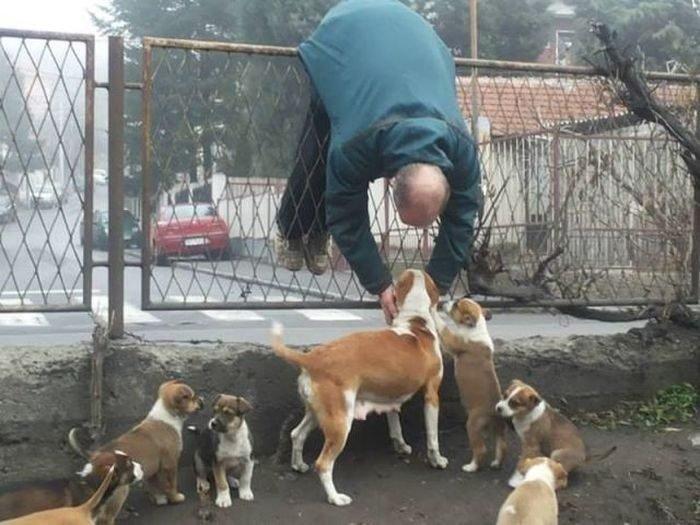 Собачники - одни из самых оп…