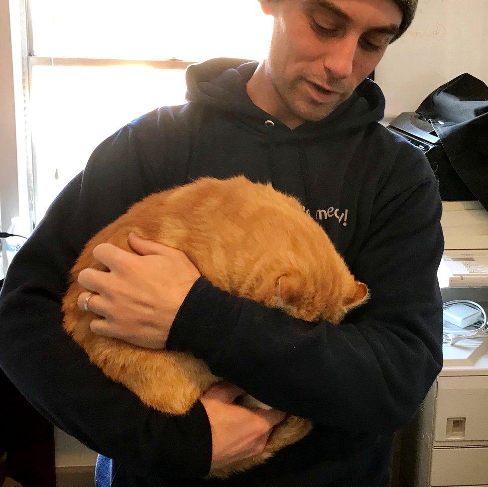 Бездомный котик не устает благодарить своих спасителей за счастье!