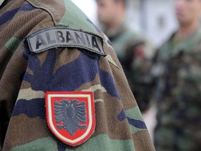 Италия вооружает Албанию старыми винтовками