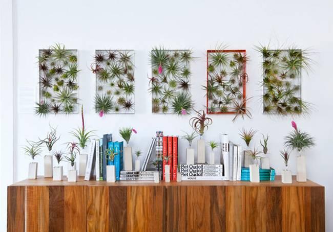 Живая стена из растений в металлических рамках