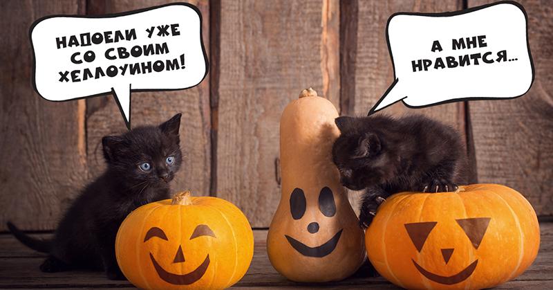 Нужно ли праздновать Хеллоуин