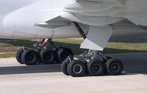 В Омске вылет самолета в Москву отложен из-за куропаток