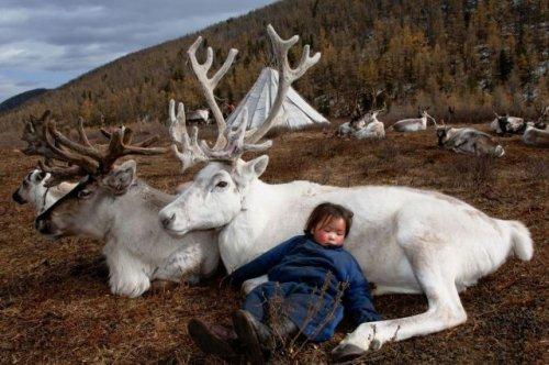 Картинки для настроения ч.1: фото приколы с людьми, животными
