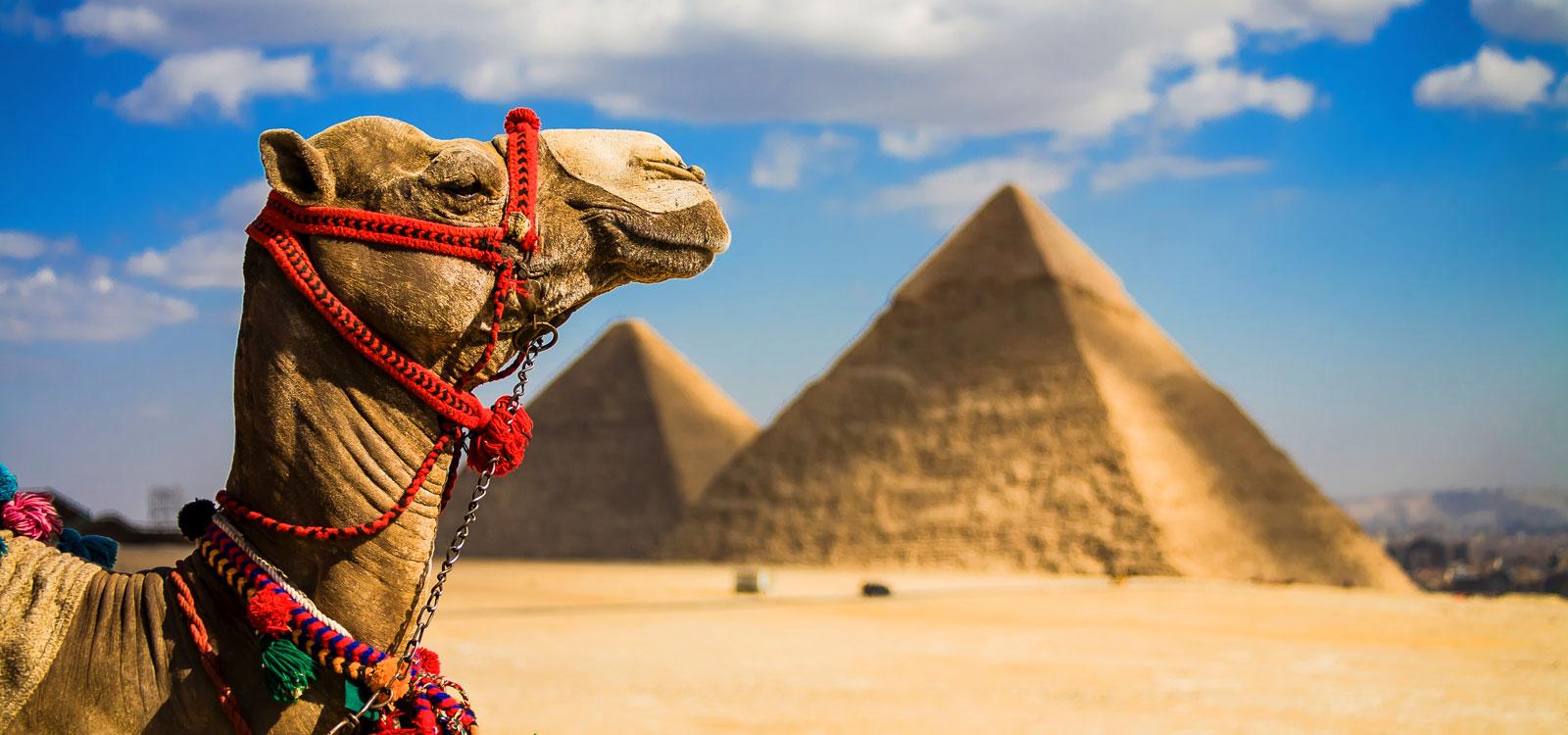 Путешествие в Египет: достопримечательности, безопасность.