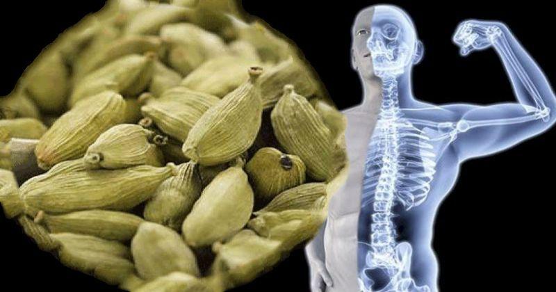 Мощный афродизиак и ярый борец с микробами: кардамон и его 11 целительных свойств