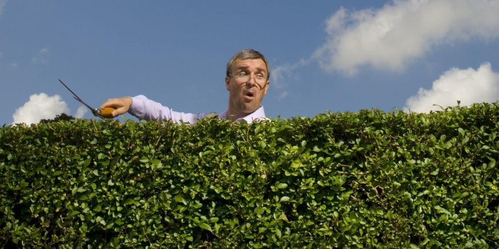 Садовые законы и правила: а вы нарушаете хоть один из этих законов садоводства?