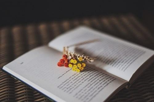 9 фактов о людях, которые любят читать.
