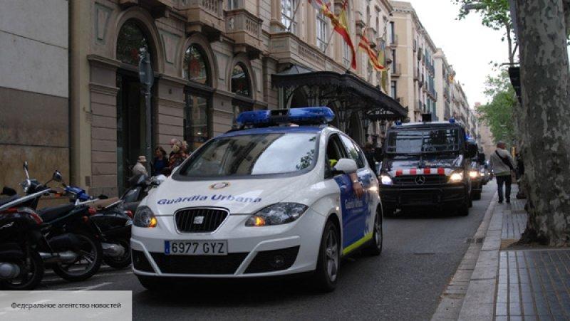 Испанская полиция освободила…