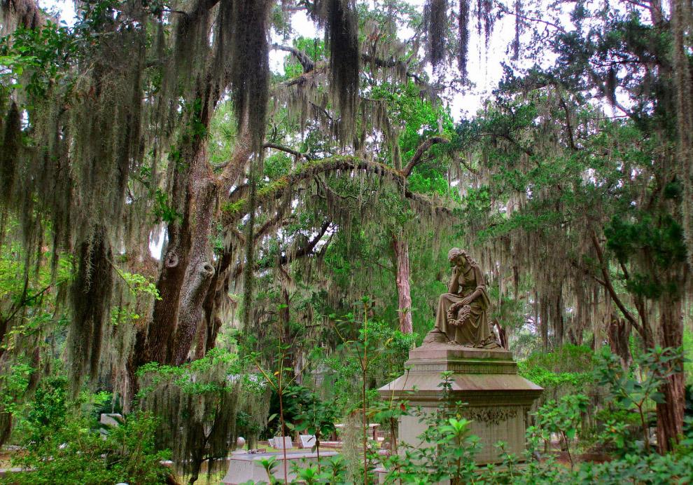 кладбище Бонавентура