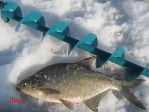 Зимняя рыбалка на Кубенском озере