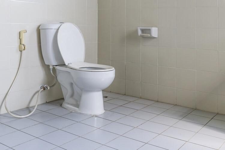5 минут — и неприятного запаха в туалете как не бывало