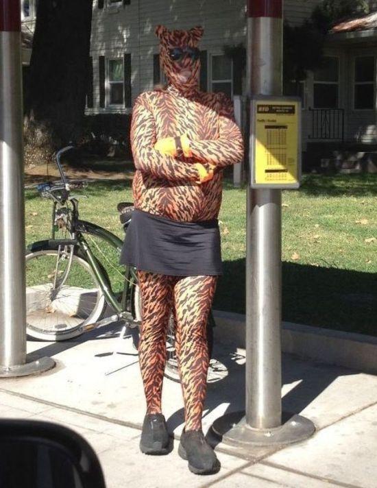 Леопардовое сумасшествие в фотографиях