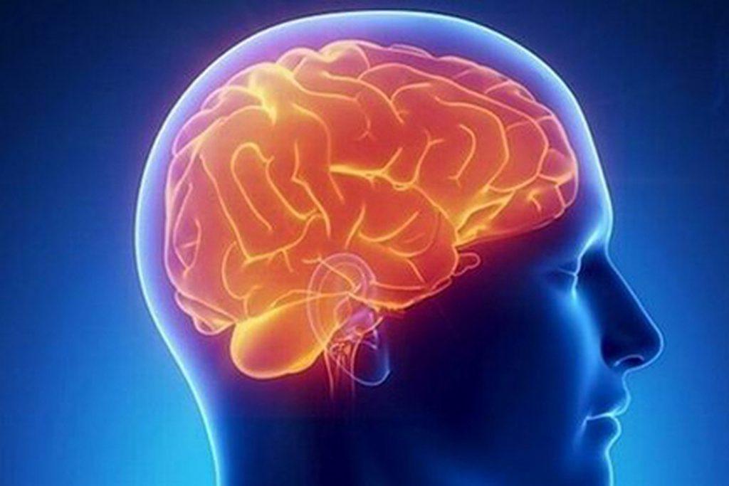 Исследователи показывают, что слишком большое количество жира делает с вашим мозгом