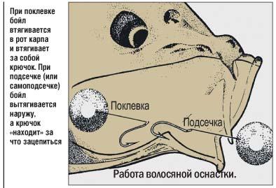 виды волосяных оснасток
