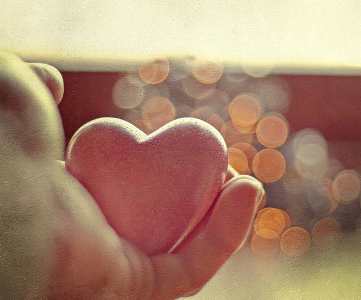 И стало сердце разум обнимать