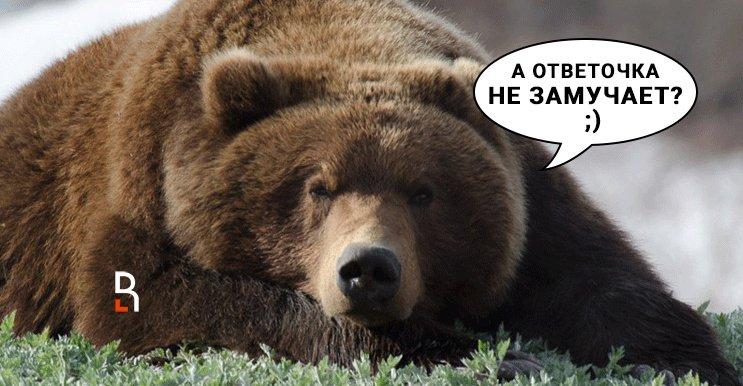 Подарок украинцам от Яндекса