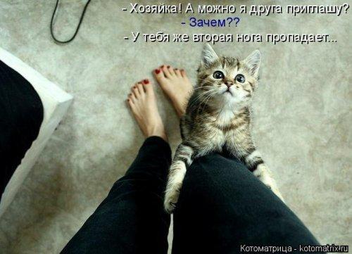 http://mtdata.ru/u19/photo3B1C/20337173982-0/original.jpg#20337173982