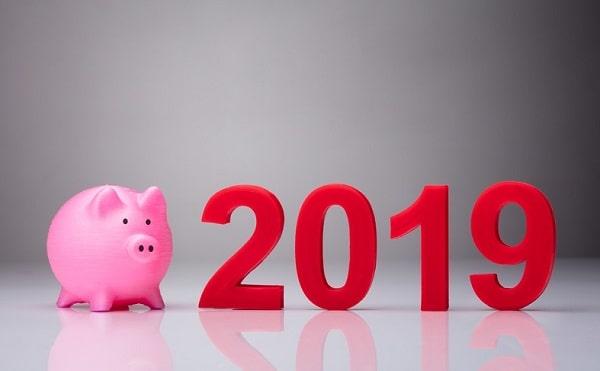2019: характеристики особенности года Желтой свиньи