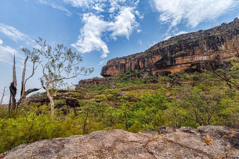 2. Национальный парк Какаду (Австралия). Это парк огромных размеров заповедник, заповедники, национальные парки, национальный парк, парки, познавательно, страны мира, туристу на заметку