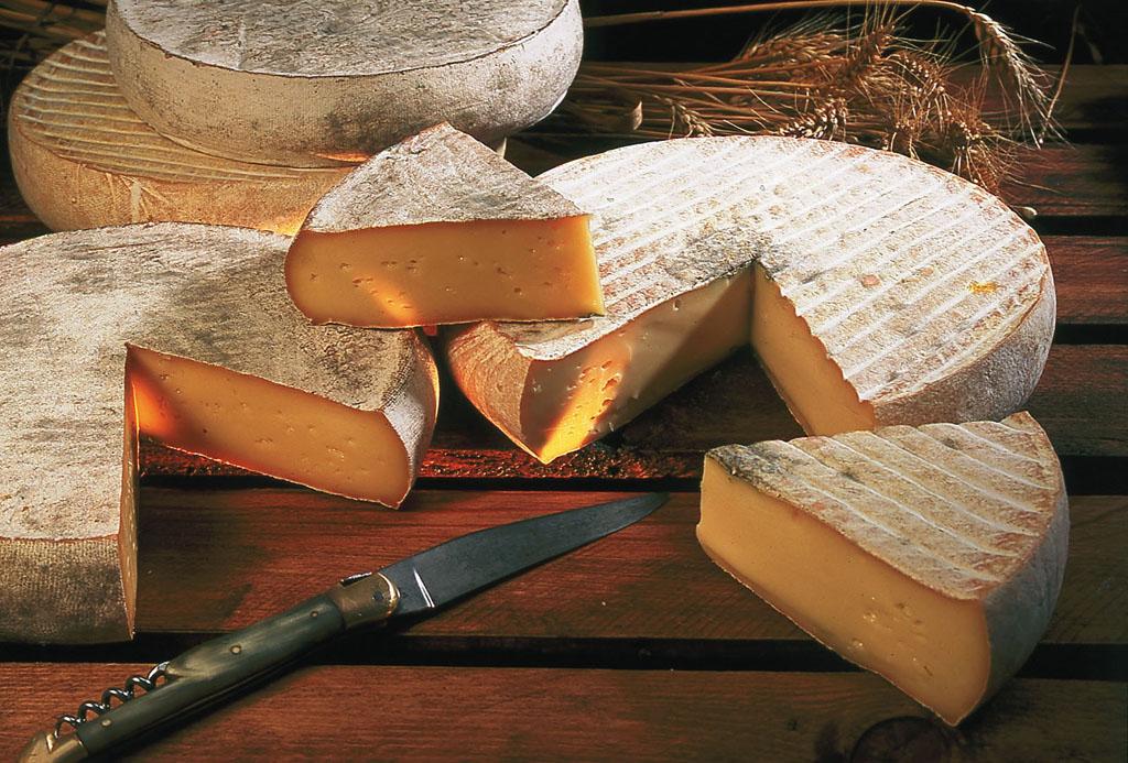 начали производить огромные круги твердого сыра