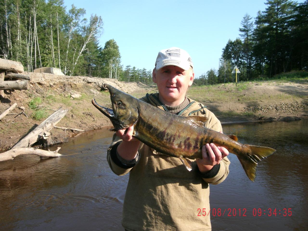 прогноз рыбалки в акмолинской области