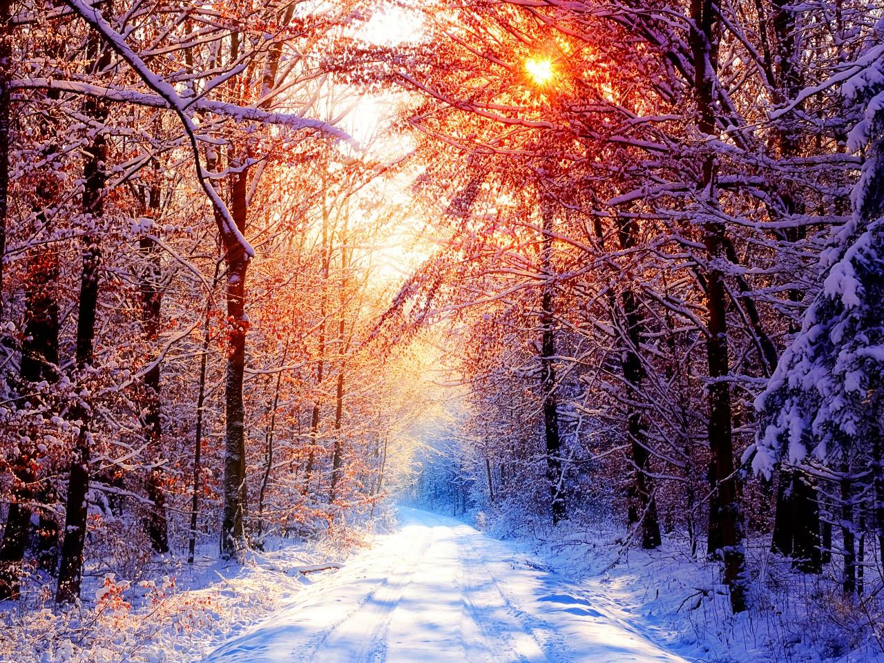 Iphone Nature Wallpaper - JoBSPapa.com