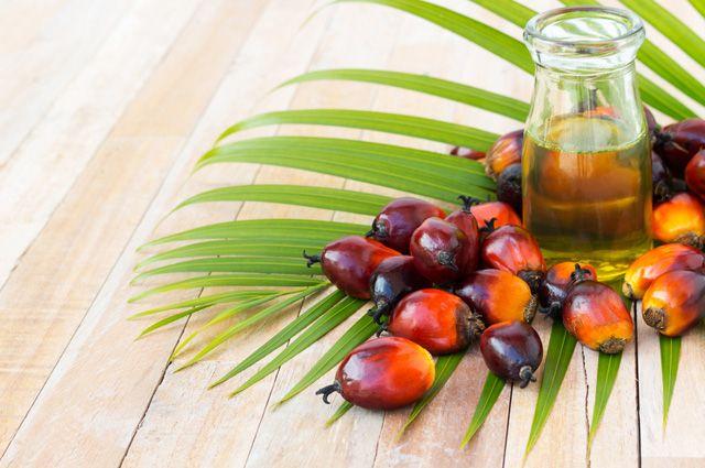 В России в 2018 году увеличился импорт пальмового масла