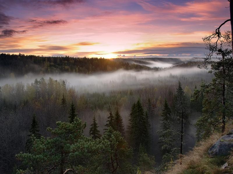 Сибирские туманы - прекрасные русские пейзажи