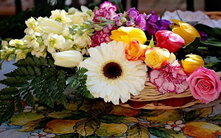 розы, гвоздики, гербера, тюльпаны