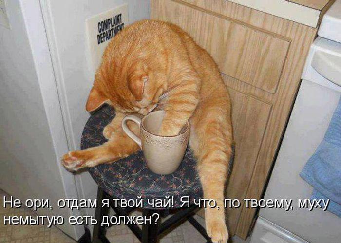 http://mtdata.ru/u19/photo42E0/20428689327-0/original.jpg#20428689327
