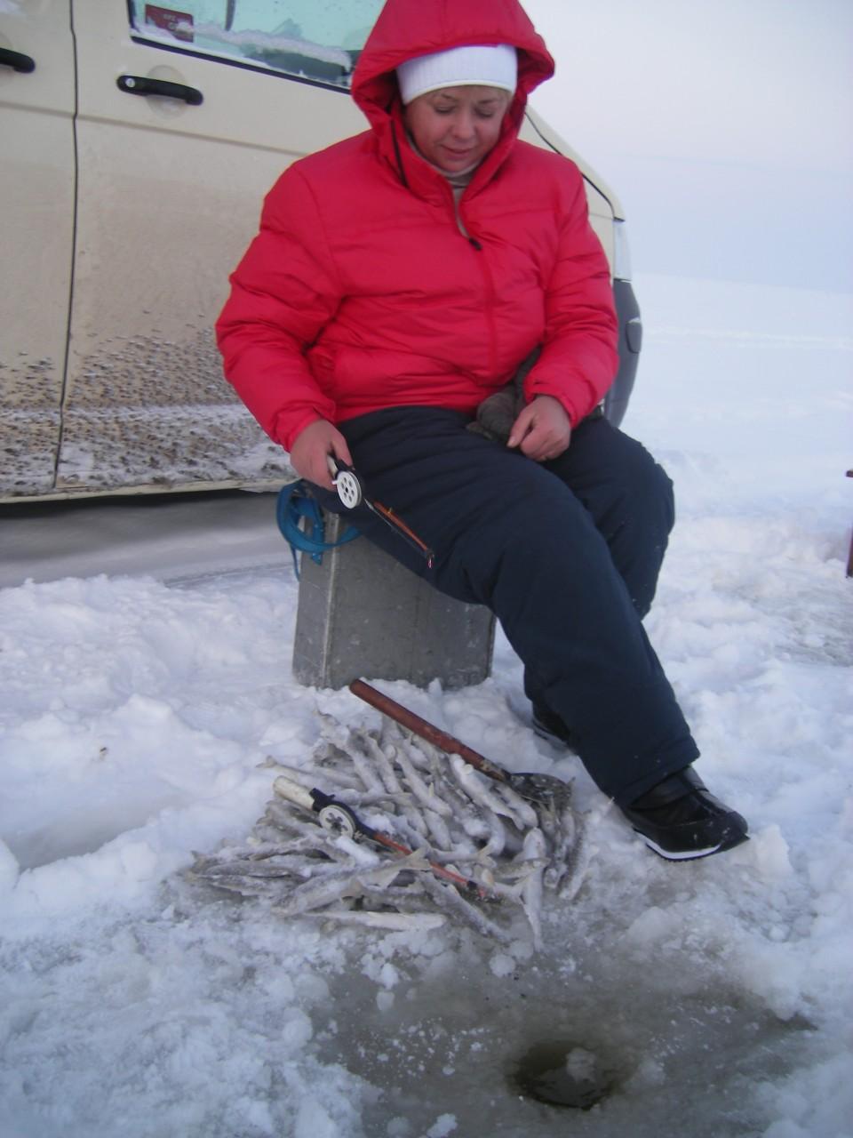зимния рыбная ловля  на ленинградской области