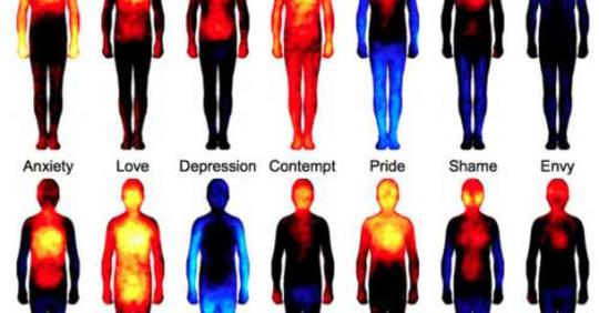Как отрицательные эмоции влияют на сердце