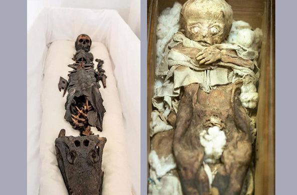 Ученые впервые показали мумию с головой крокодила
