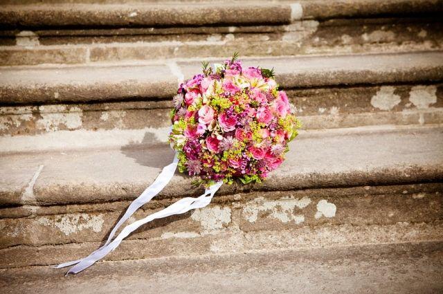 Первые свадебные церемонии в Московском зоопарке проведут в сентябре