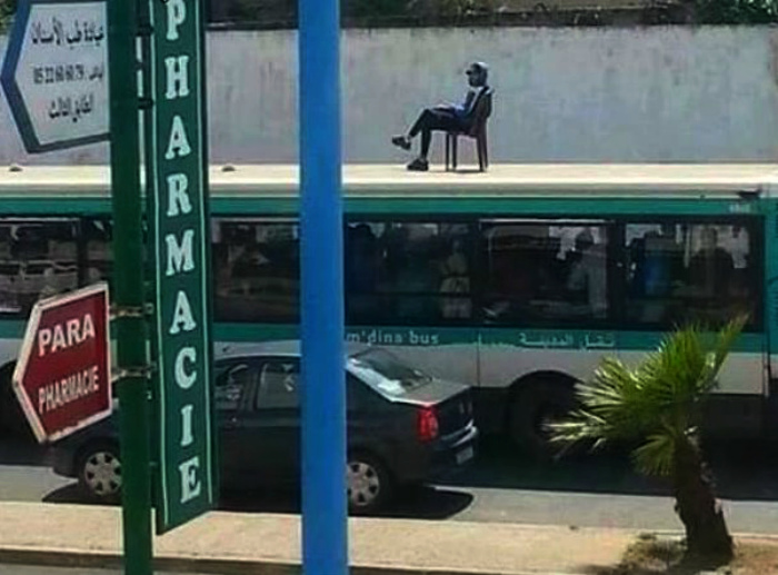 Незаурядный пассажир на крыше.